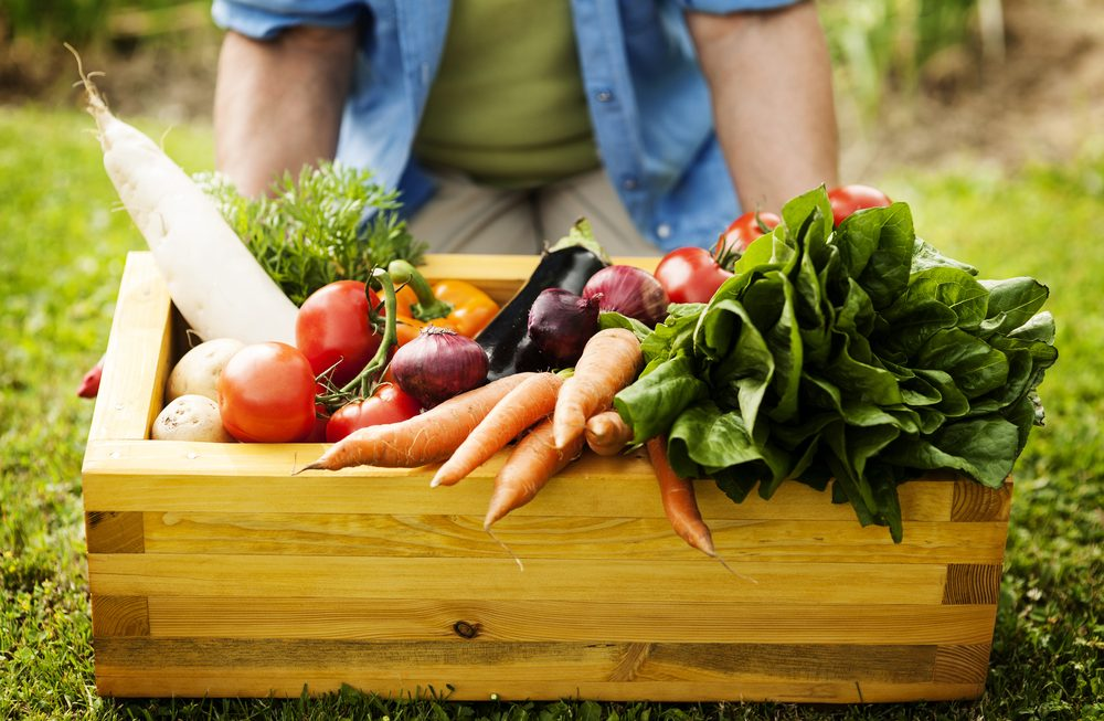Jakie warzywa do ogrodu?